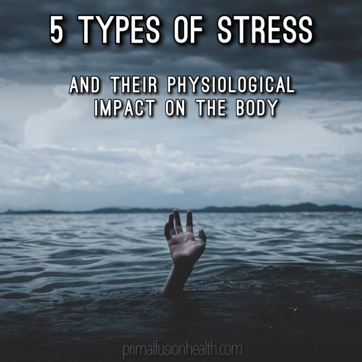 Person with one hand above water with 5 Types of Stress written above