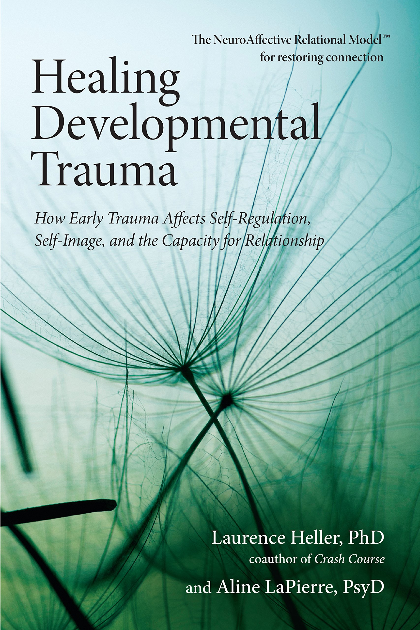 Healing Developmental Trauma book